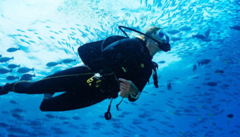 Diving In – A Perfect Therapy