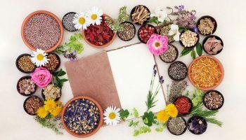 The Vital Role of Naturopathic Medicine